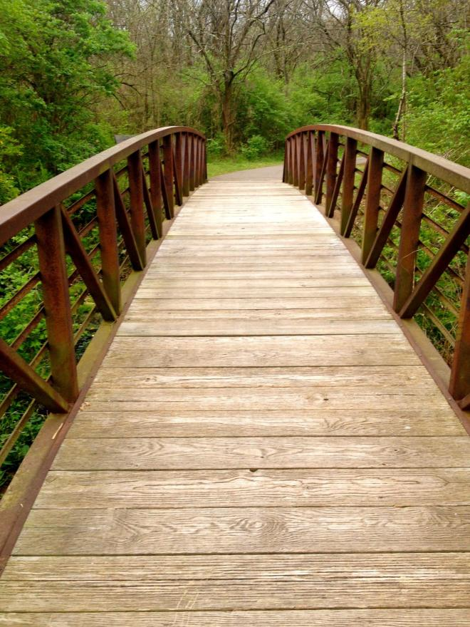 """Another """"Bridge of Death"""", this time in Crockett Park"""
